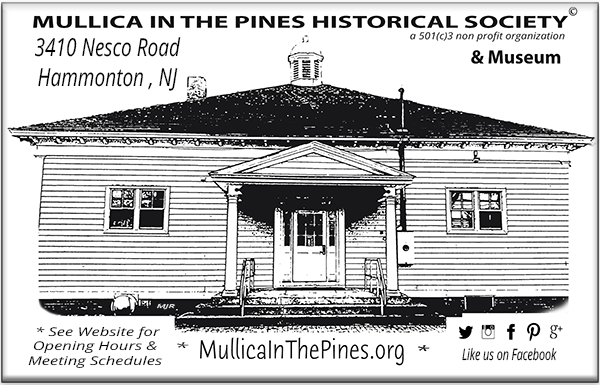 Mullica in the Pines